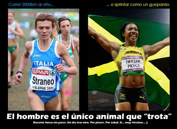 sprints_vs_cardio