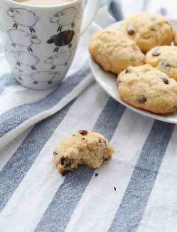 Coconut Chocolate Chip Cookies - daniscookings.com