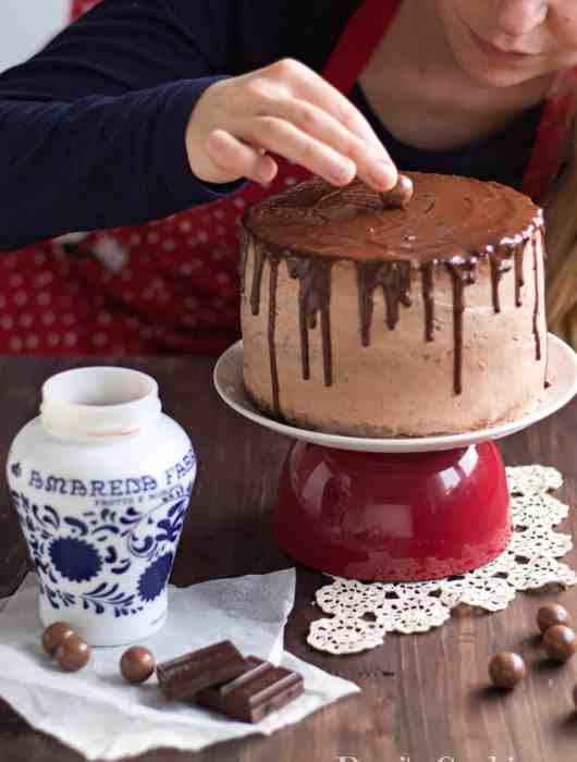Scrumptious Chocolate Sponge Cake with Cheesecake filling | Dani's Cookings