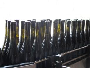 Chiarli Bottle Line