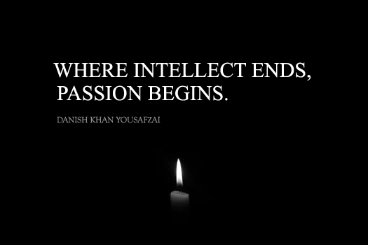 Where intellect ends, passion begins. (Danish Khan Quotes)