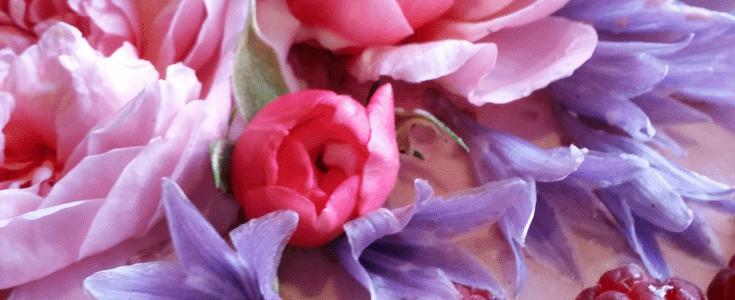 Lagkage med 2 slags mousse : hindbærmousse og citron-hyldeblomstmousse, samt spiselige blomster. © DanishThings.com