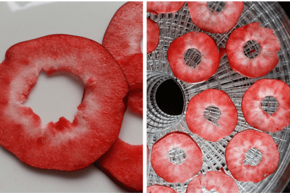 Redlove apples - dehydrator