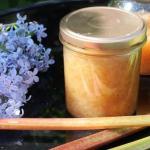 Foråret er over os og syrenerne blomstrer. Her får du en metode til at lave syrensaft OG syrenmarmelade af de samme blomster og en opskrift på Syrensyltetøj med rabarbersaft. Brug syrensaften som saftevand, til hjemmelavet syrensodavand eller brug den i drinks. Spis syrenmarmelade og syrensyltetøj til vafler, pandekager eller på de bedste boller. Find opskrifter, gratis print og inspiration til årets gang på danishthings.com