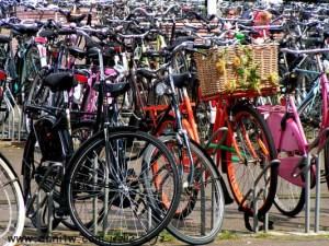 תמונות יפות למכירה צילום אופניים, הולנד 295