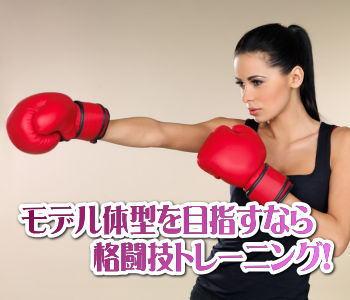 モデル体型を目指すなら格闘技トレーニング!