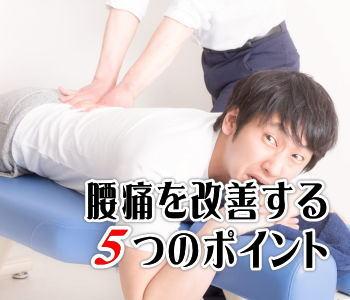 腰痛を改善する5つのポイント