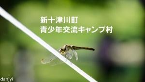 新十津川青少年交流キャンプ村のアイキャッチ