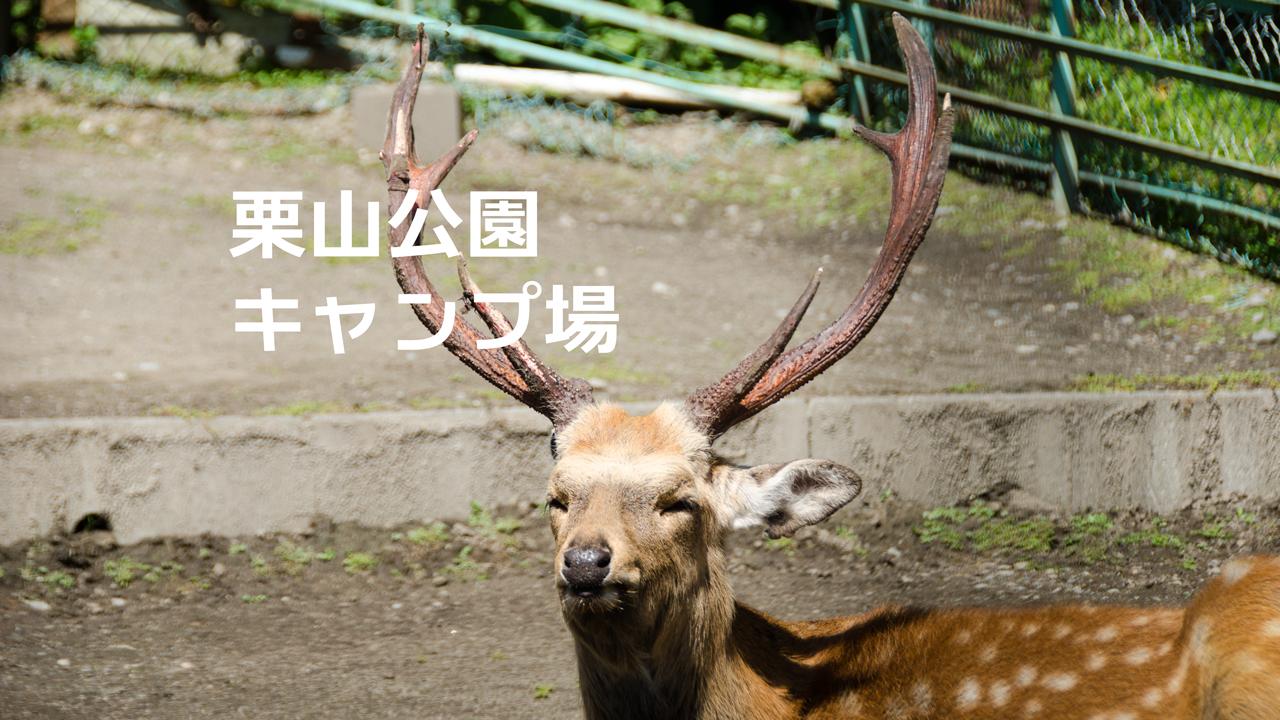 栗山公園キャンプ場のアイキャッチ