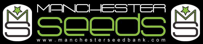 Dank Genetics on Manchester Seeds