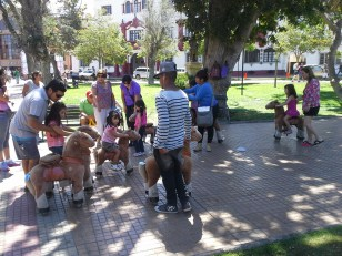 In a park, a man and his wife had a business selling pony rides to little girls. The ponys are mechanical. They go forward if you bounce up and down on the seat.