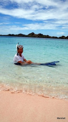 Char the snorkeler at a pink sand beach. Red coral causes the pink sand.
