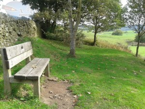 Another bench.