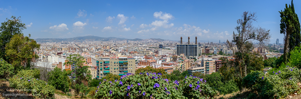 Panorama of Barcelona, but the real beauty is in the architecture contained within the city