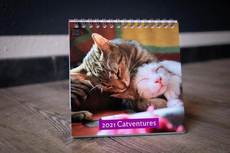 Kalender mit Katzenfotos