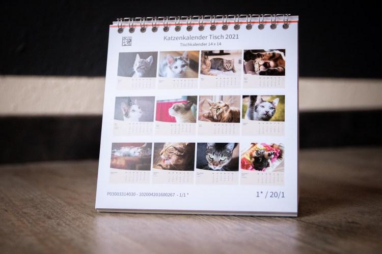 Alle Motive des Katzenkalenders Catventures 2021