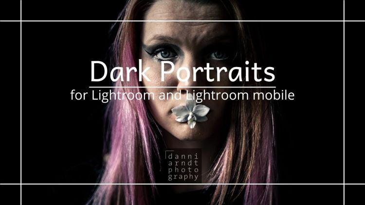 Vorschau Dark Portraits Presets Transparent Blue