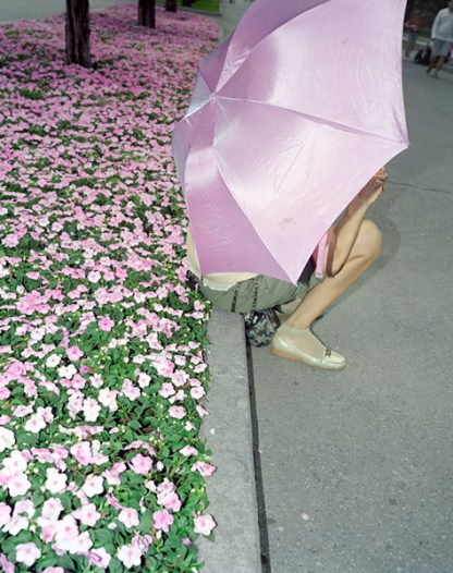 006_Flowers
