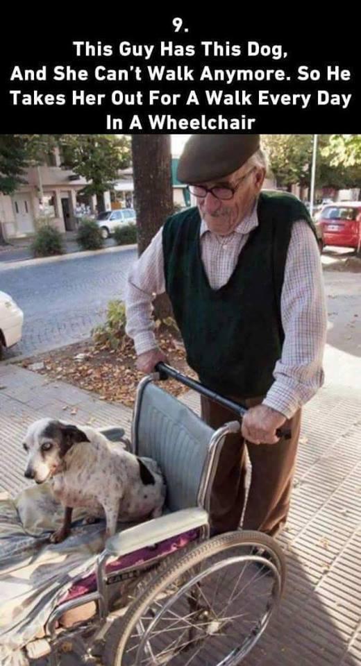 Man-and-dog