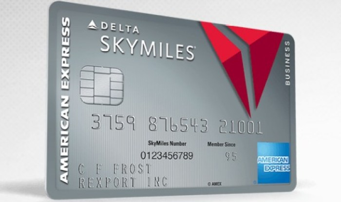 Amex platinum delta skymiles business card get 70k bonus danny amex platinum delta business 70k offer reheart Gallery