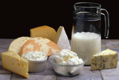 Dairy-products.jpg