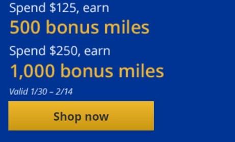 MileagePlus Shopping portal bonus