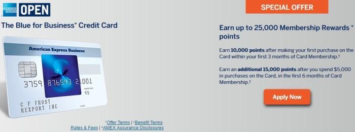 Amex Blue For Business Bonus