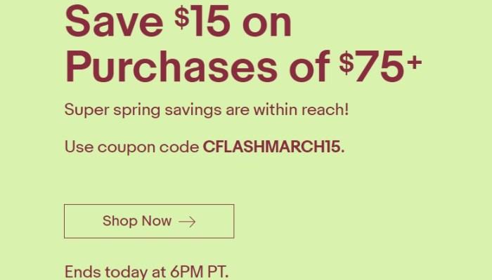 eBay Flash Sale