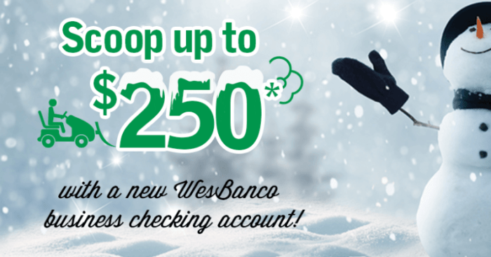 wesbanco 250 bonus