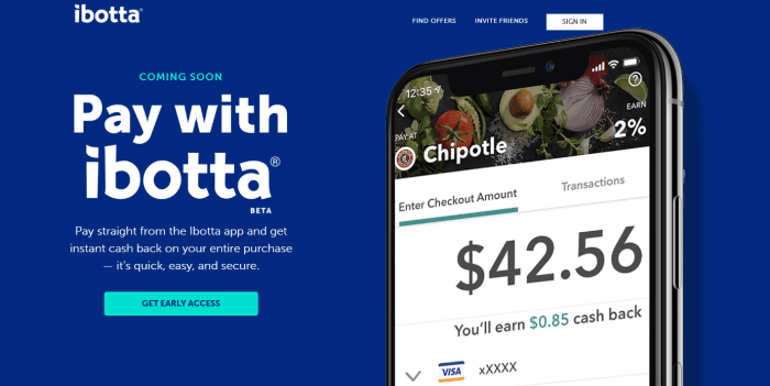 pay with ibotta