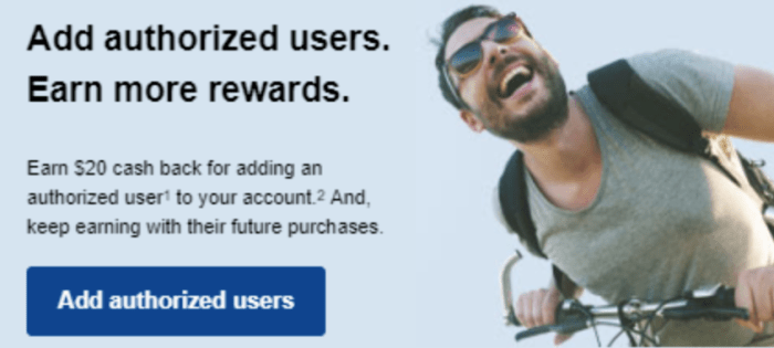 chase authorized user bonus