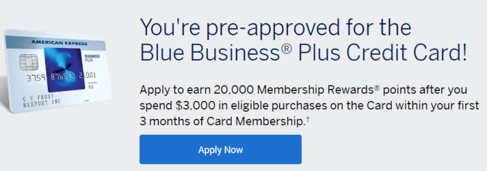 Amex Blue Business Plus 20K