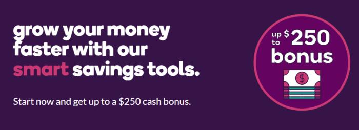 ally bank bonus