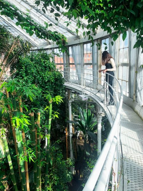 The Botanical Gardens of Copenhagen University!