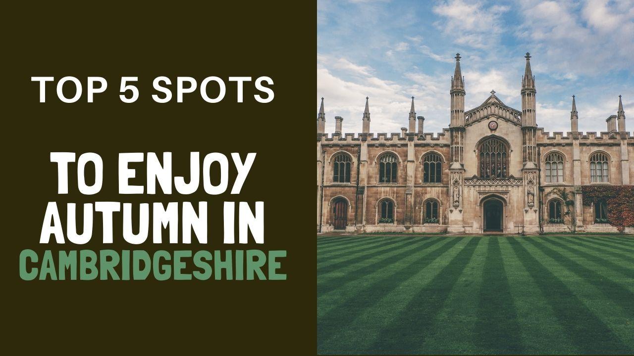 top 5 spots to enjoy autumn in Cambridgeshire