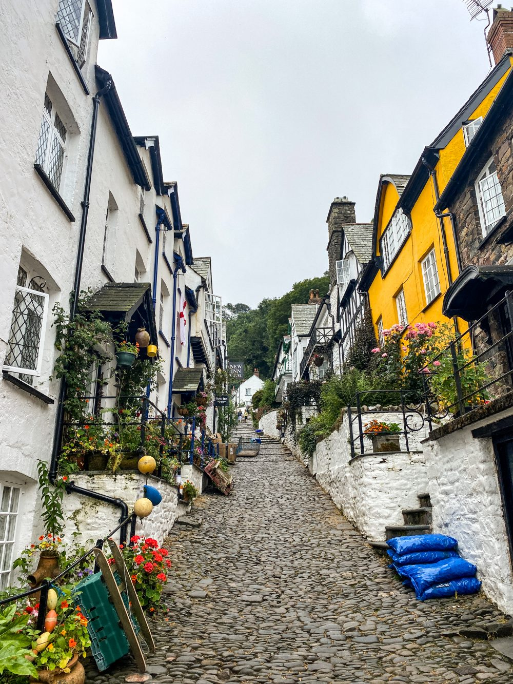 cobbled streets of Clovelly's hill with beautiful painted white and yellow houses lining each side