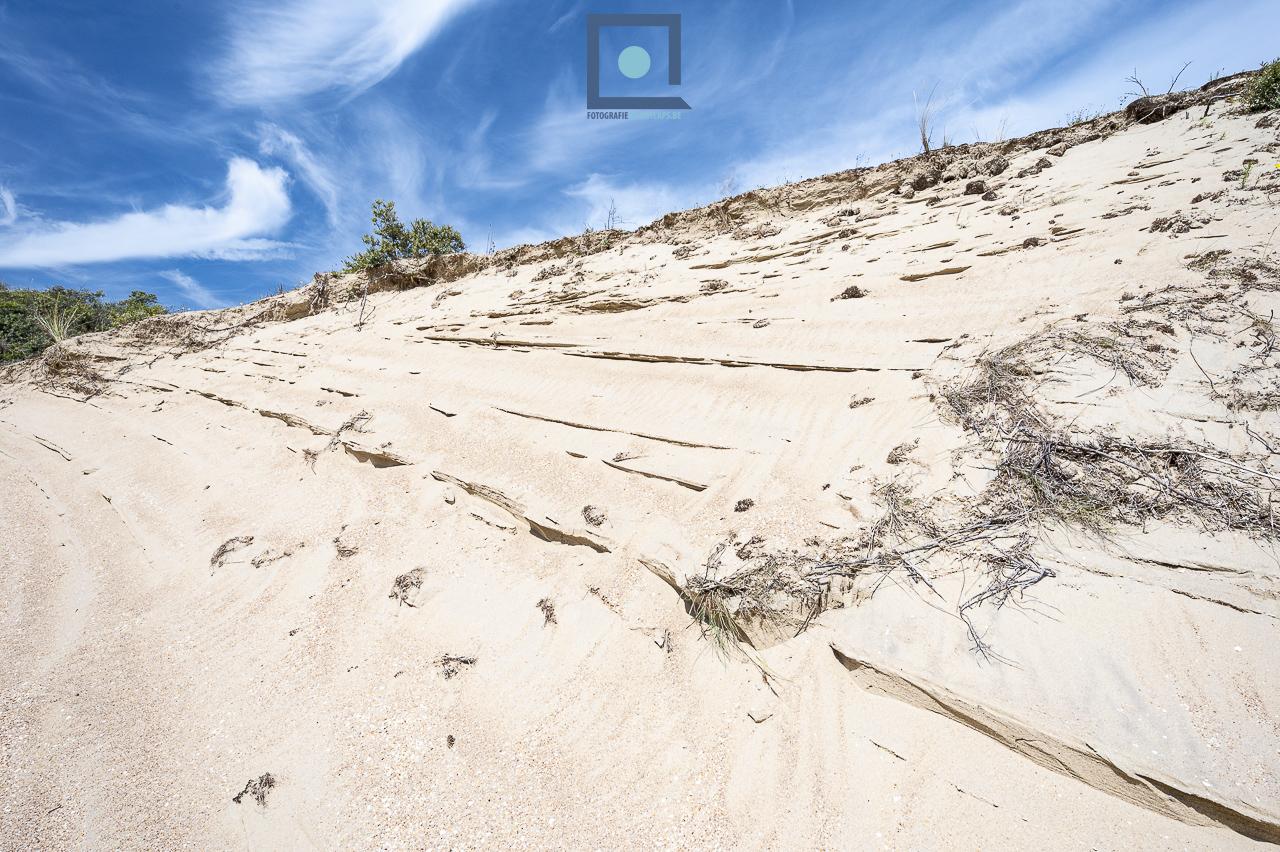 Duinen langs de Belgische Westkust: duinencomplex Ter Yde