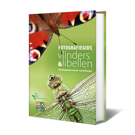 Minigids vlinders en libellen