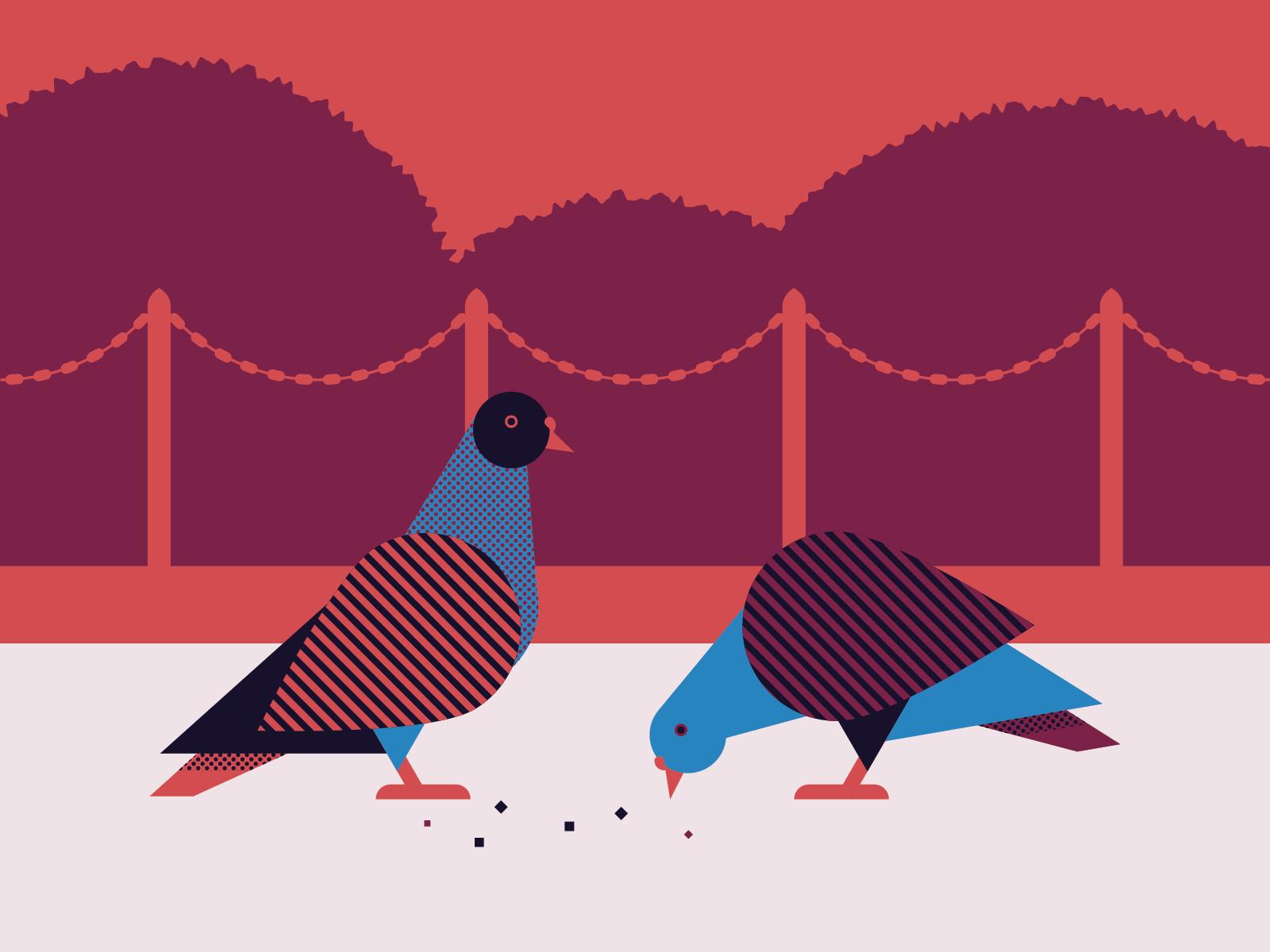 pigeons_1600x1200