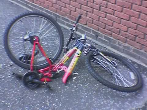 My mangled bike again
