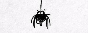 Spider willies