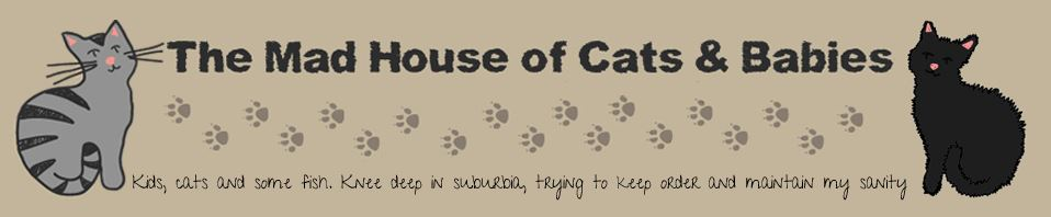 The mad house of cats & babies header