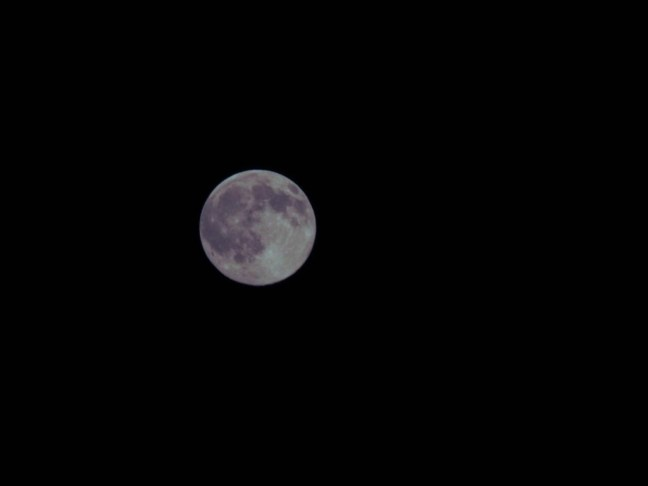 Nikon P900 Full Moon-3