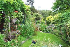 A well-maintaned and lively garden stretches away.