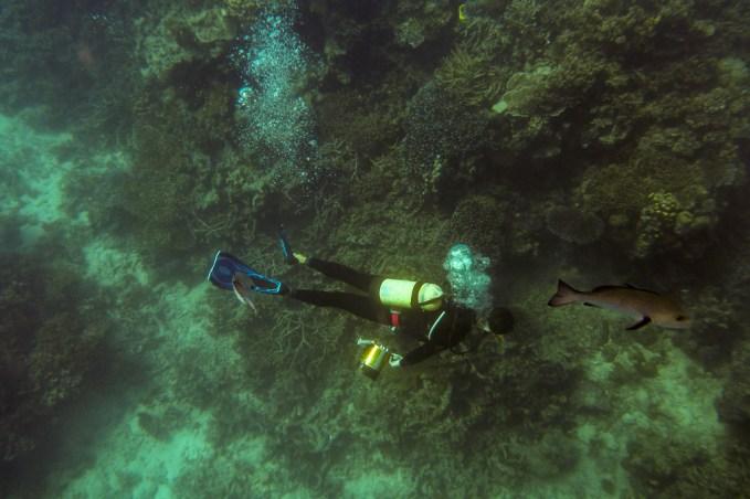 great_barrier_reef-47