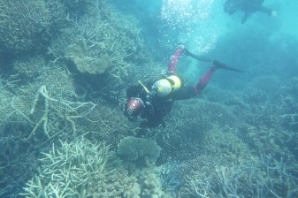 great_barrier_reef-53