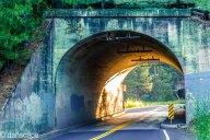 Thorpe Rd tunnels-3
