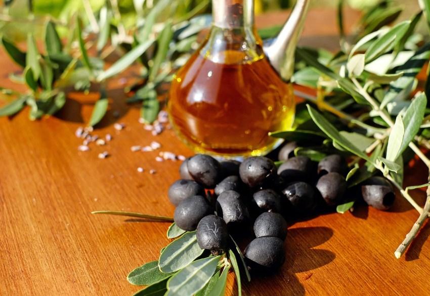 Oliventur med Eurodan