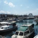Tilbage til Cypern
