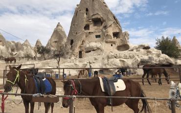 hestetur i kappadokien, ridetur i kappadokien, oplevelser i kappadokien, visit cappadocia, heste i kappadokien, de smukke hestes lande, 2k travel agency, oplev kappadokien, oplevelser i tyrkiet, alanya blog, alanya blogger, dansk i tyrkiet, rejseblogger, dansk rejseblog, udlandsdansker i tyrkiet, heste i kappadokien